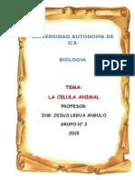 Monografia de La Celula