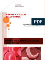 Anemia de Celulas Celulas Falciformes Ppt Finishhh