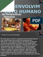 Pag. 72-82 Desenvolvimento Humano