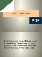 Unidad 4 Proteinas