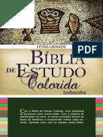 Bíblia de Estudo Colorida