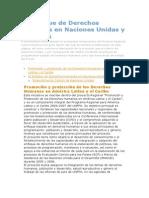 AA 2 El Enfoque de Derechos Humanos en Naciones Unidas y El UNFPA