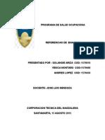 Programa de Saop (1)