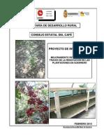 Mejoramiento de Cafetales Atraves de La Renovación de Plantaciones de Guerrero
