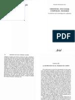 Sanmartin, Ricardo_ Observar, Escuchar, Comparar, Escribir_Cap 3