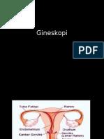 Gineskopi.pptx