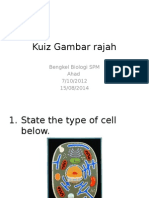 Kuiz Gambar Rajah Biologi