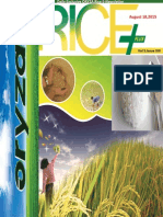 18 August,2015 Daily Exclusive ORYZA Rice E-Newsletter by Riceplus Magazine