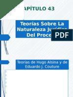Teorías Sobre La Naturaleza Jurídica Del Proceso