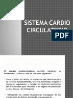 Sistema cardio circulatorio.pptx