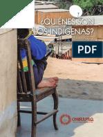 Quienes Son Los Indigenas - Resumen
