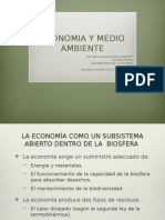 Economia Ecológica MLRSemestreOctubre2012aFebrero2013