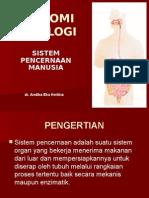 sistempencernaan1-150310003019-conversion-gate01.ppt