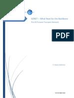Fae Sonet - What Next - APTN Whitepaper v1