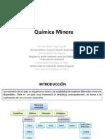 Quimica Minera