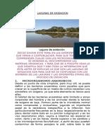 Nuevo Documento de Microsoft Office Word (Autoguardado)