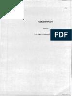 iz_roper_nodate.pdf