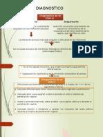 Diapositivas Diagnostico