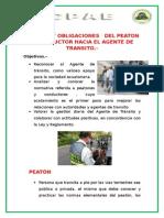 Deberes y Obligaciones Del Peaton y Conductor Hacia El Agente de Transito