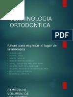 TERMINOLOGIA-ORTODONTICA (1).pptx
