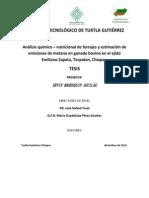 Instituto Tecnológico de Tuxtla Gutiérrez