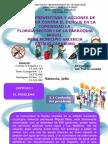 Diapositivas Metodología para la investigación