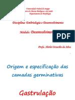 EmbDes3 Cam Germinativas