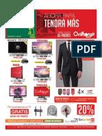 Diario Libre 30-06-2015