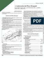 dermatomas y miotomas.pdf