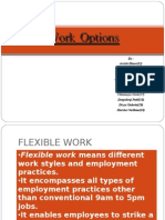 233945791 Flexible Work Options