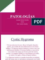 segundo pp patologias casi completo