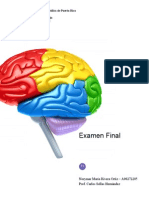 [PSYC 100] Examen Final