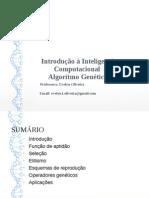 AlgoritmoGenéticos