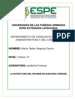 Segovia Estructura Informe de Auditoria