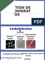 La Función Inmunologica de La Piel