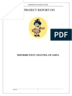 119041617 Distribution Channel AMUL