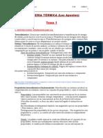 Termica parcial1