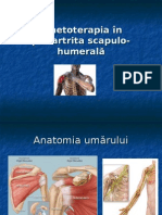 Kinetoterapia PSH 2