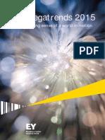 Megatrends Report 2015