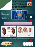 Insu-renal Caso Clinico