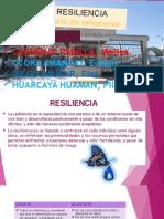 Resiliencia Salud Mental