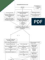 Systemic Lupus Erythematosus Pathophysiology