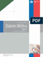 Minsal Diabetes Tipo 1