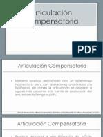 articulación compensatoria en LPH