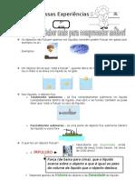 Flutuação_Fundamentação teórica - 1º Ciclo