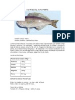 Pierna PDF
