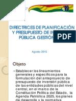 VIPFE Directrices Planificación Inversión 2016