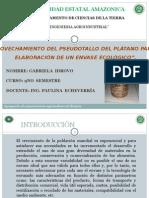 proyecto platano