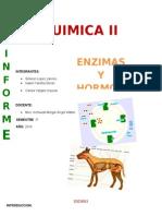 ENZIMAS Y HORMONAS..docx
