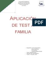 Test de Familia